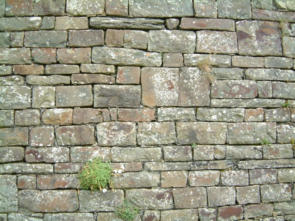 Bahçe duvarı kaplama modelleri (2)